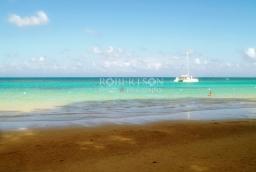 Jamaica Shore