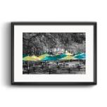 Umbrellas on Campus